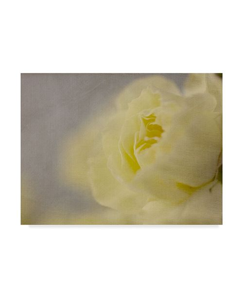 "Trademark Global Judy Stalus Rose Whisper II Canvas Art - 20"" x 25"""
