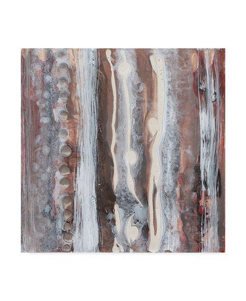 "Trademark Global Renee W. Stramel Surface Study I Canvas Art - 15"" x 20"""