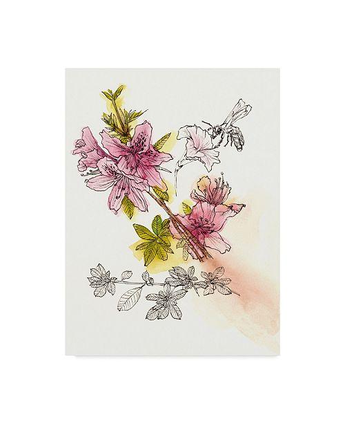 "Trademark Global Melissa Wang Floral Field Notes I Canvas Art - 20"" x 25"""