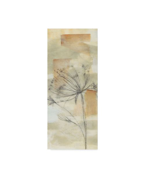 "Trademark Global Jennifer Goldberger Neutral Lace II Canvas Art - 20"" x 25"""