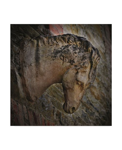 "Trademark Global Christine Sainte-Laudy Majestic Stone Horse Canvas Art - 15"" x 20"""