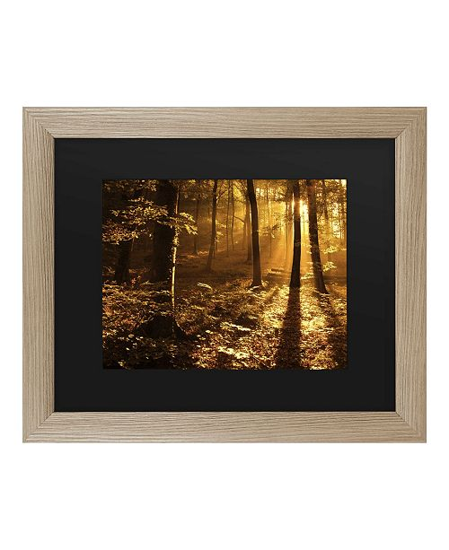 "Trademark Global Philippe Sainte-Laudy Morning Light Matted Framed Art - 27"" x 33"""