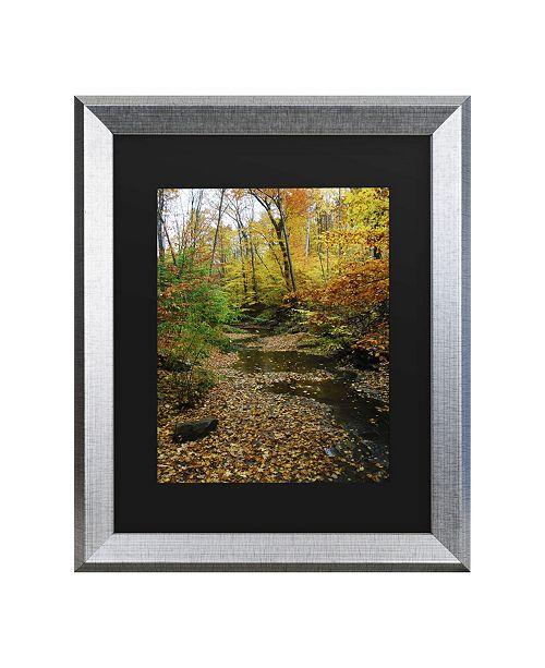 """Trademark Global Kurt Shaffer Autumn Stream Matted Framed Art - 20"""" x 25"""""""
