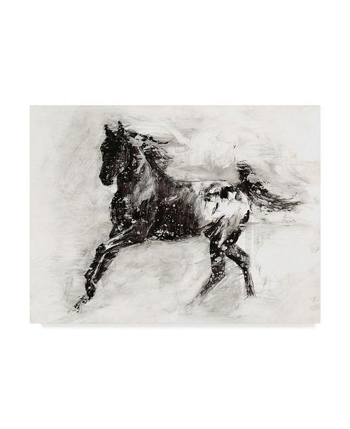 "Trademark Global Ethan Harper Rustic Appaloosa II Canvas Art - 37"" x 49"""
