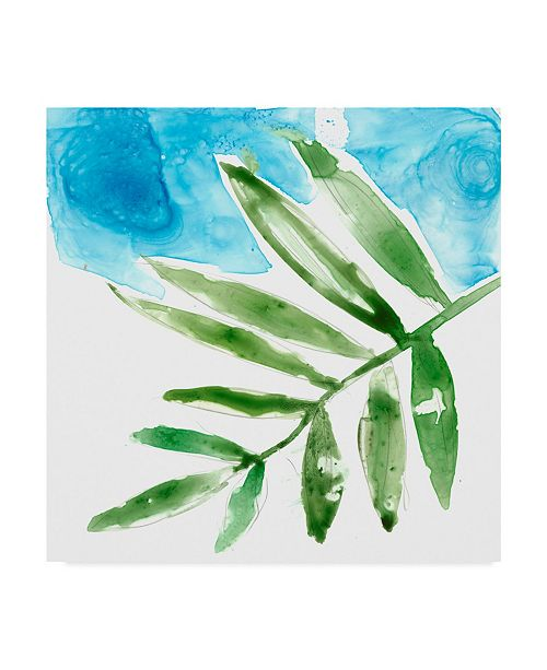 "Trademark Global Jennifer Goldberger Tropical Display I Canvas Art - 20"" x 25"""