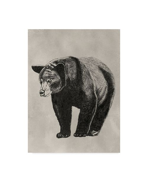 "Trademark Global Naomi Mccavitt Pen and Ink Bear II Canvas Art - 37"" x 49"""