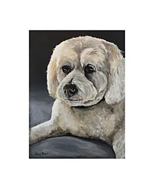 "Hippie Hound Studios Cockapoo Portrait Canvas Art - 37"" x 49"""