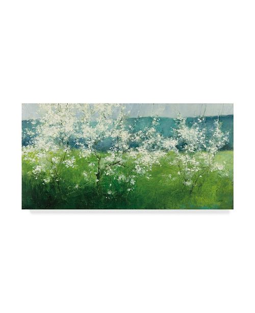 "Trademark Global Julia Purinton Mountain Spring Canvas Art - 37"" x 49"""