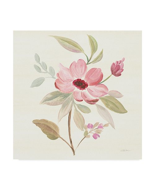 "Trademark Global Silvia Vassileva Petals and Blossoms VI Canvas Art - 27"" x 33"""