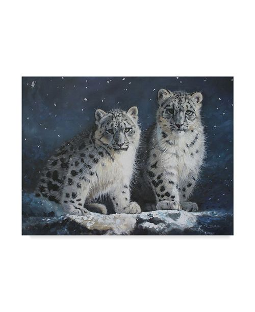 "Trademark Global Pip Mcgarry Young Snow Leopards in Dark Canvas Art - 20"" x 25"""