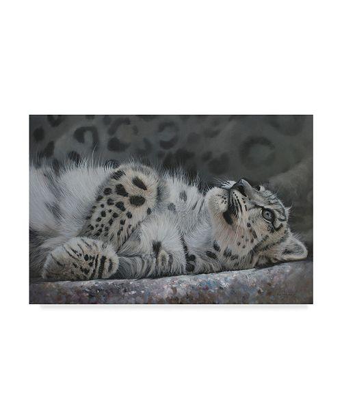 "Trademark Global Pip Mcgarry Snow Leopard Reclining Canvas Art - 37"" x 49"""