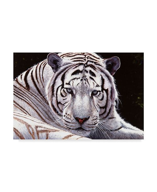 "Trademark Global Pip Mcgarry White King Canvas Art - 20"" x 25"""