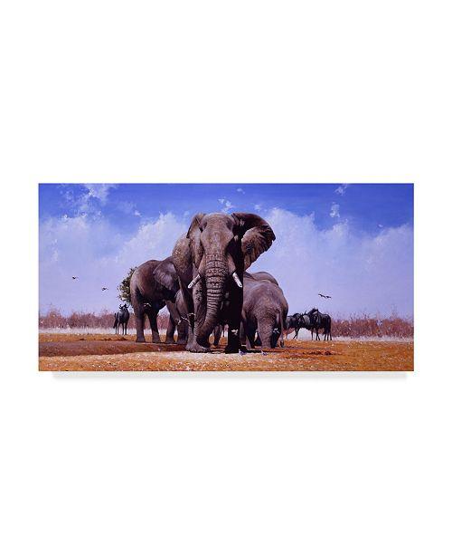 "Trademark Global Pip Mcgarry King of Marabou Pan Canvas Art - 37"" x 49"""
