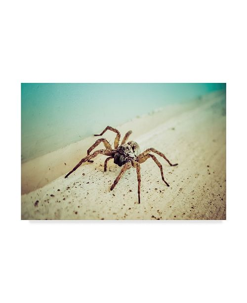 "Trademark Global Pixie Pics Arachnid Blue Canvas Art - 37"" x 49"""