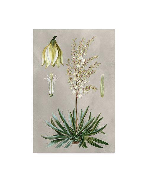 """Trademark Global Pancrace Bessa Ua Ch Tropical Varieties I Canvas Art - 20"""" x 25"""""""