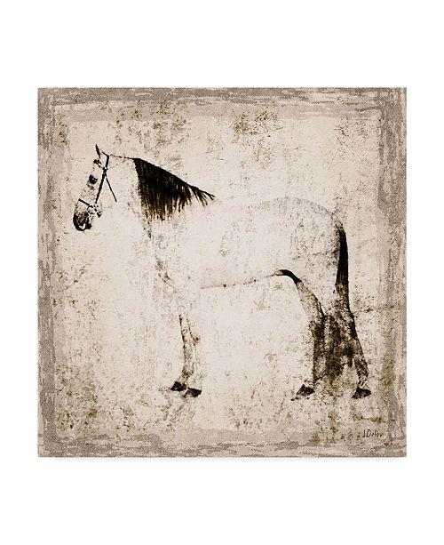 "Trademark Global Irena Orlov White Horse Portrait II Canvas Art - 15"" x 20"""