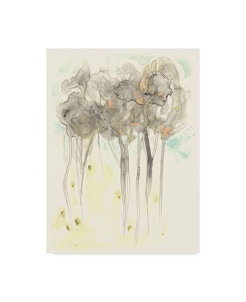 """Trademark Global June Erica Vess Sylvan Sketch II Canvas Art - 20"""" x 25"""""""