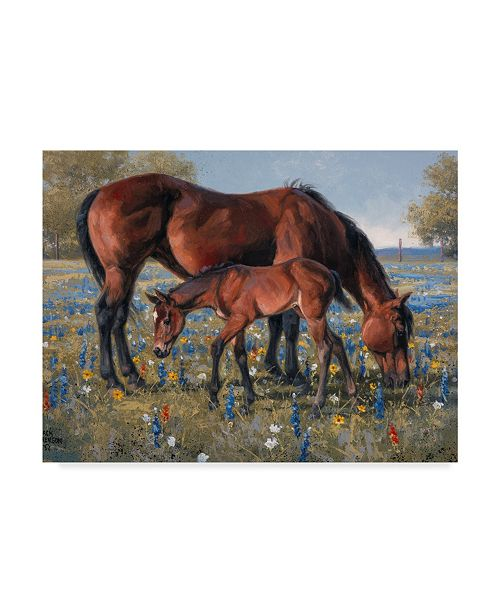 "Trademark Global Jack Sorenson Wildflower Canvas Art - 37"" x 49"""