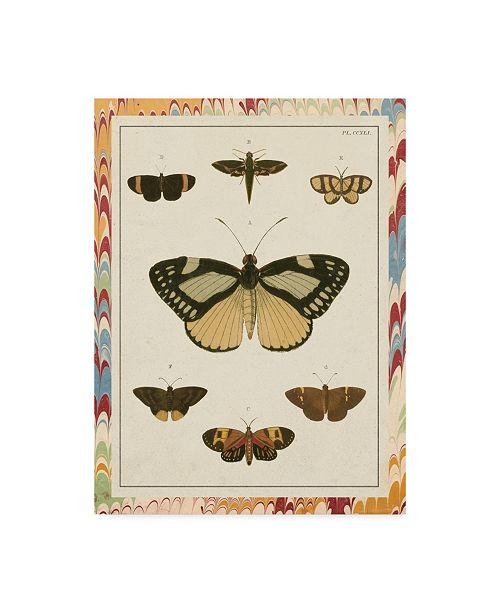 "Trademark Global Vision Studio Marble Butterflies II Canvas Art - 20"" x 25"""