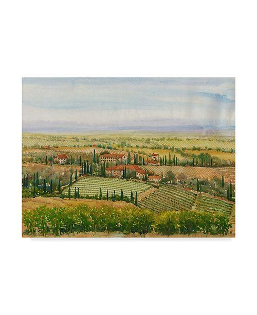 "Trademark Global Tim Otoole Wine Country View II Canvas Art - 37"" x 49"""