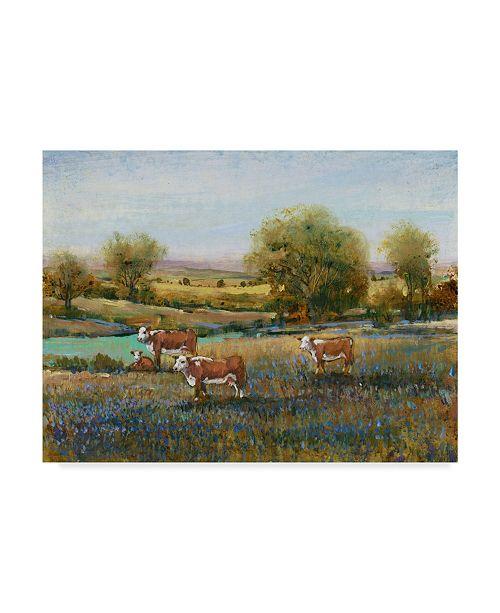"Trademark Global Tim Otoole Field of Cattle II Canvas Art - 20"" x 25"""