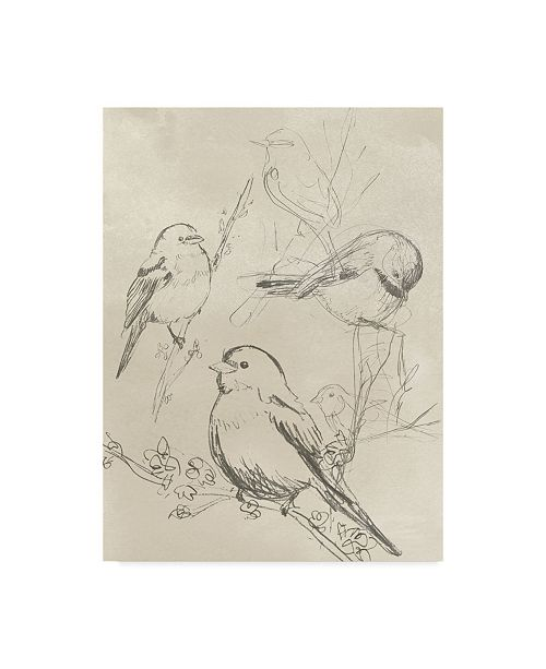 "Trademark Global June Erica Vess Vintage Songbird Sketch II Canvas Art - 20"" x 25"""
