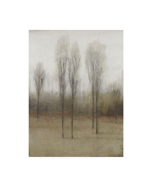 "Trademark Global Tim Otoole Last Day of Fall I Canvas Art - 37"" x 49"""