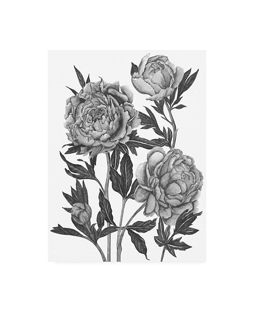 "Trademark Global Melissa Wang Flowers in Grey V Canvas Art - 20"" x 25"""