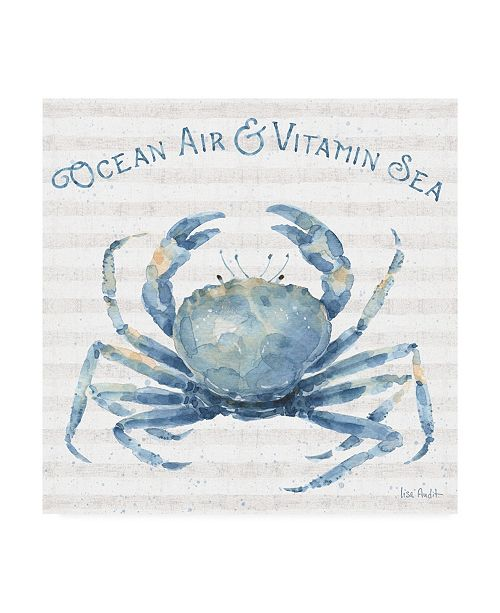 "Trademark Global Lisa Audit Nautical Life X Canvas Art - 15"" x 20"""