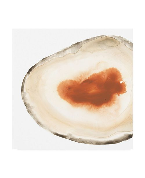 """Trademark Global June Erica Vess Cropped Geodes I Canvas Art - 27"""" x 33"""""""