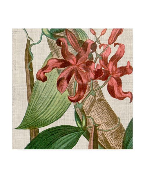 "Trademark Global Vision Studio Cropped Turpin Tropicals IX Canvas Art - 15"" x 20"""