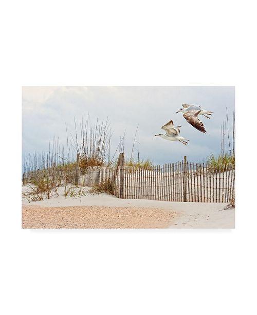 "Trademark Global PH Burchett Water Bird Glimpse I Canvas Art - 20"" x 25"""