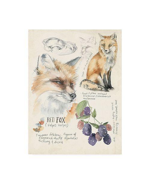 "Trademark Global Jennifer Paxton Parker Wildlife Journals III Canvas Art - 20"" x 25"""