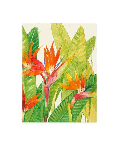 "Trademark Global Tim Otoole Watercolor Tropical Flowers IV Canvas Art - 37"" x 49"""