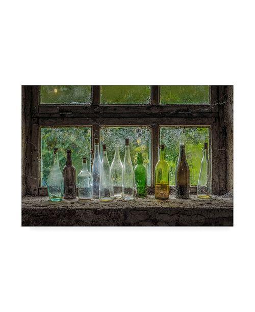 "Trademark Global Chris Coenders Bottles Canvas Art - 19.5"" x 26"""