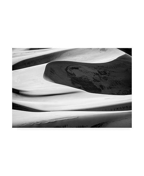 """Trademark Global Design Fabrikken Desert 1 Fabrikken Canvas Art - 36.5"""" x 48"""""""