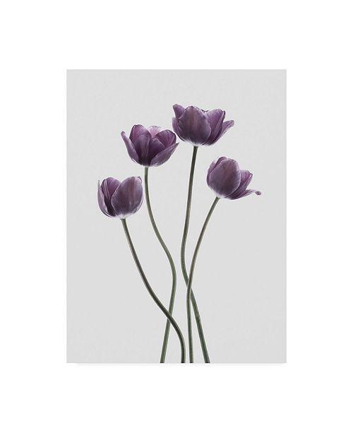 "Trademark Global Design Fabrikken Tulips Purple Fabrikken Canvas Art - 19.5"" x 26"""