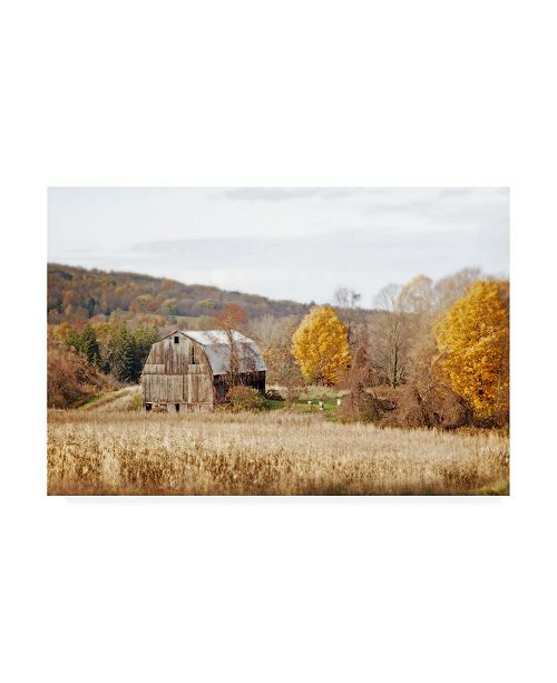 "Trademark Global Brooke T. Ryan Barn & Beehives Canvas Art - 19.5"" x 26"""