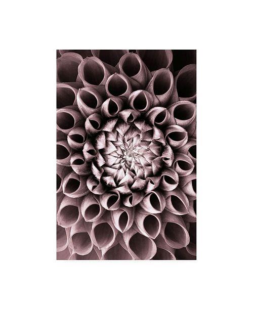 "Trademark Global PhotoINC Studio Just Open Canvas Art - 19.5"" x 26"""