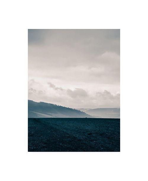 "Trademark Global PhotoINC Studio Blue Mountains VI Canvas Art - 36.5"" x 48"""