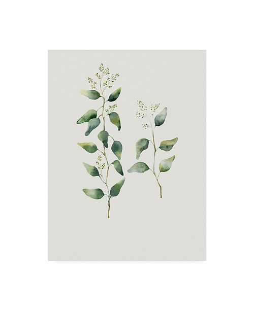 "Trademark Global Incado Botanical II Canvas Art - 27"" x 33.5"""