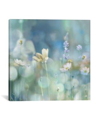 "Morning Meadow Ii by Kate Carrigan Wrapped Canvas Print - 37"" x 37"""