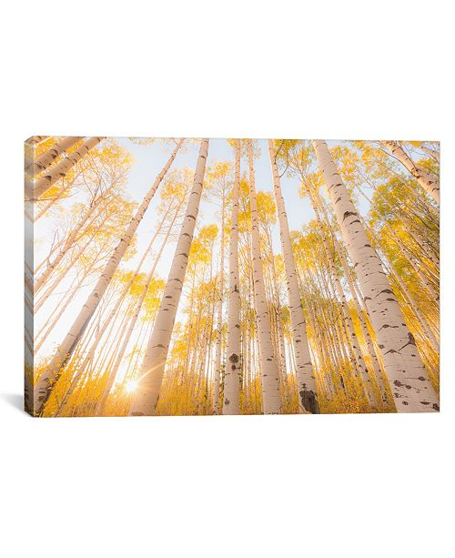"""iCanvas Colorado by Dan Ballard Wrapped Canvas Print - 18"""" x 26"""""""