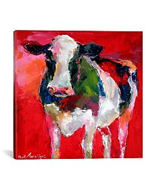 """iCanvas Cow by Richard Wallich Wrapped Canvas Print - 37"""" x 37"""""""