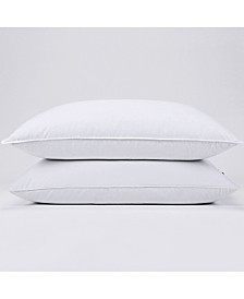 Puredown Pillow Standard Set of 2