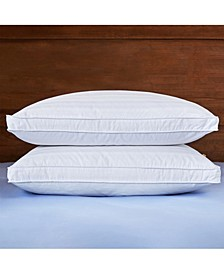 Gusset Pillow with Pillow Protector Collection