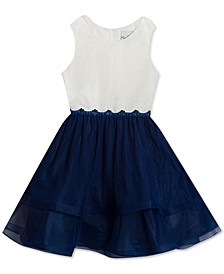 Little Girls Colorblocked Tulle Dress