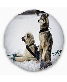 """Designart Large Sled Dogs Relaxing Animal Throw Pillow - 16"""" Round"""