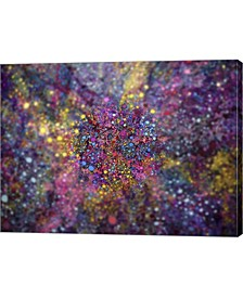 """Clarity of Insight by MusicDreamerArt Canvas Art, 26.5"""" x 20"""""""