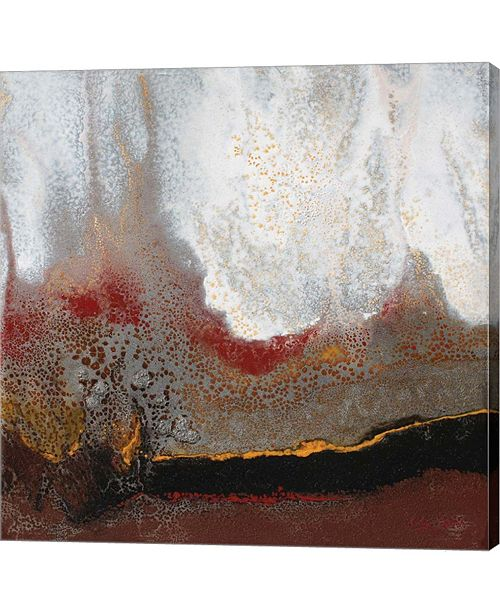 """Metaverse Copper Ridge by Jay Zinn Canvas Art, 28"""" x 28"""""""